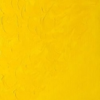 Chrome Yellow Hue (164)