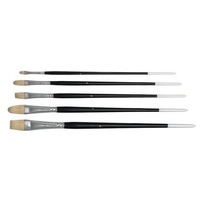 Bristle Brush Set of 5